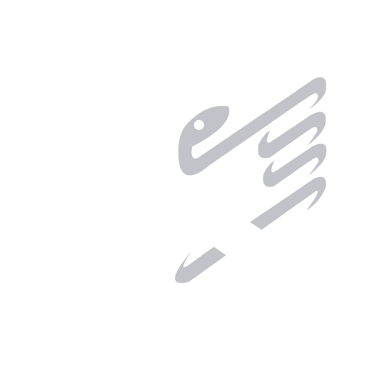 COMAEM